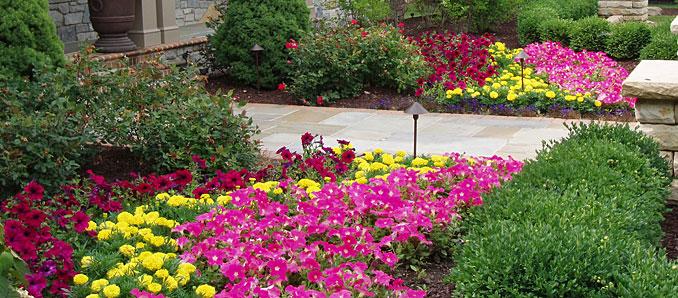 - Cleveland Ohio Landscapers, Cleveland Ohio Planting Expert
